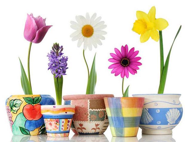 """Предпросмотр схемы вышивки  """"цветы в горшках """". цветы в горшках, цветы,тюльпан,ромашка,нарцисс,ваза, предпросмотр."""
