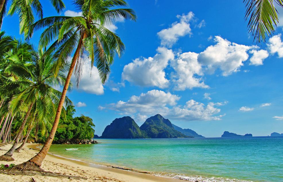 Море и пальмы картинки и анимации, фотографии морских ...