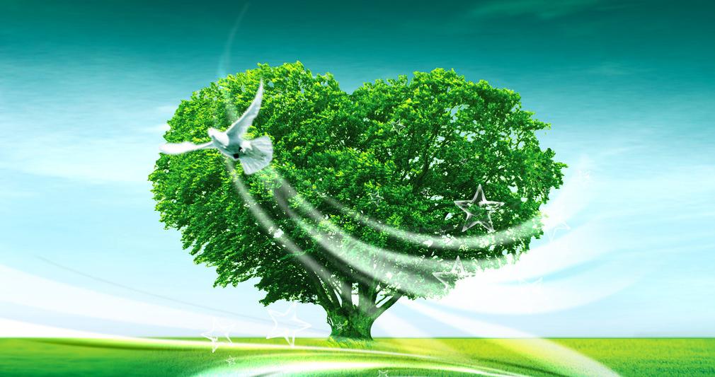 Картинки с зеленой природой