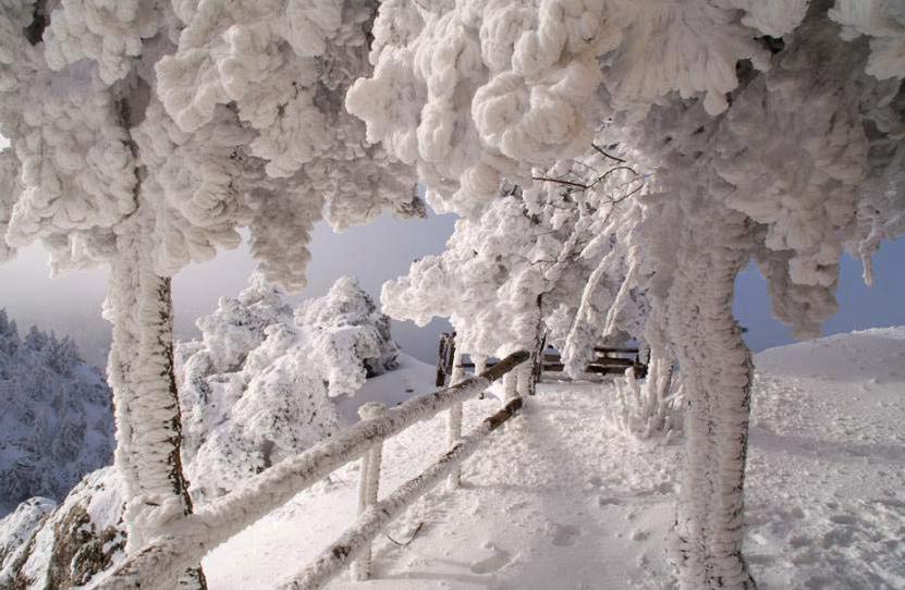 Движущиеся картинки красивой природы