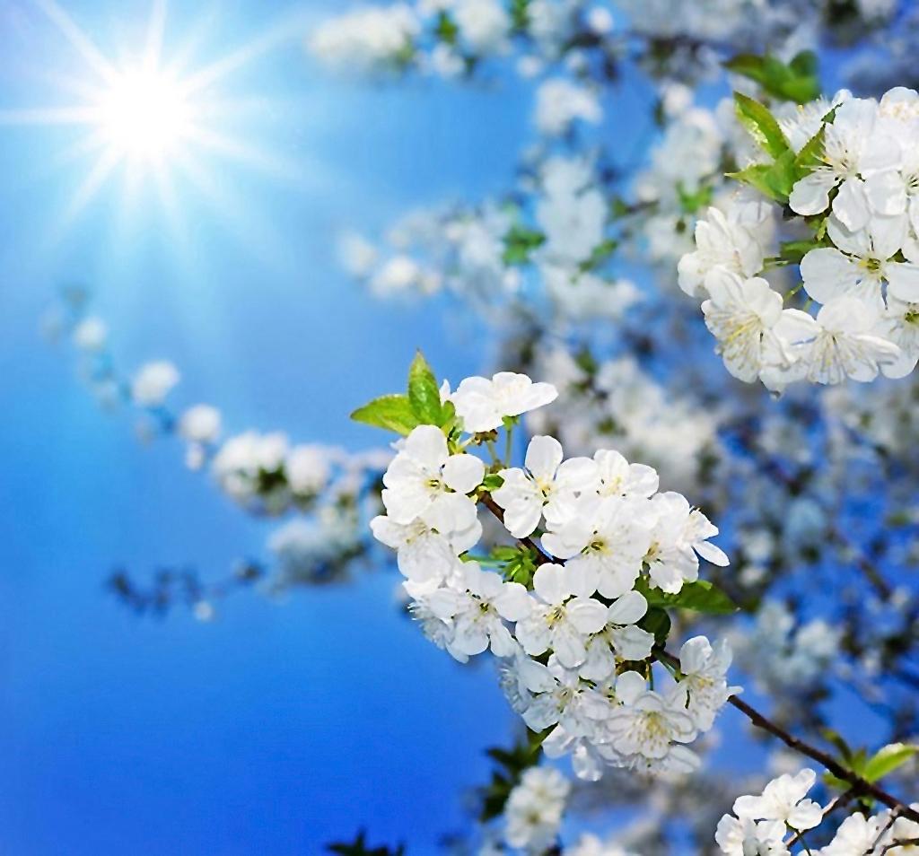 Пейзажи природы с радугой, весенние фотографии Весенние Рамки